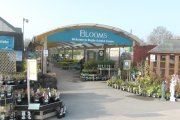 Entrance to Blooms in Rugby