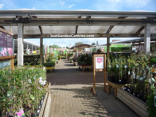 Plants Area At Dobbies Garden Centre Atherstone