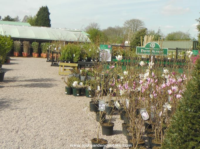 earlswood garden centre solihull
