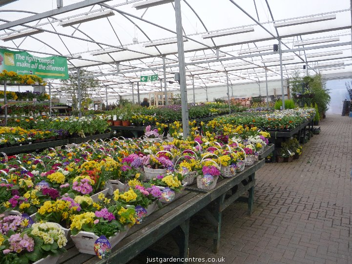 Yarnton Garden Centre In Kidlington Oxfordshire Justgardencentres